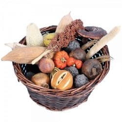 sensory fruit basket