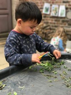 tuff tray herbs