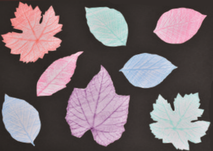 Leaf prints autumn crafts
