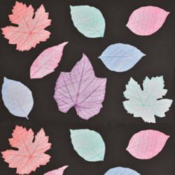 Leaf prints autumn crafts