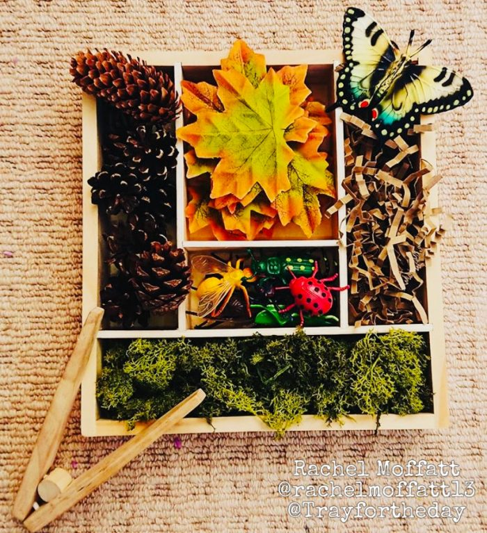 autumn natural wooden tinker tray play set up
