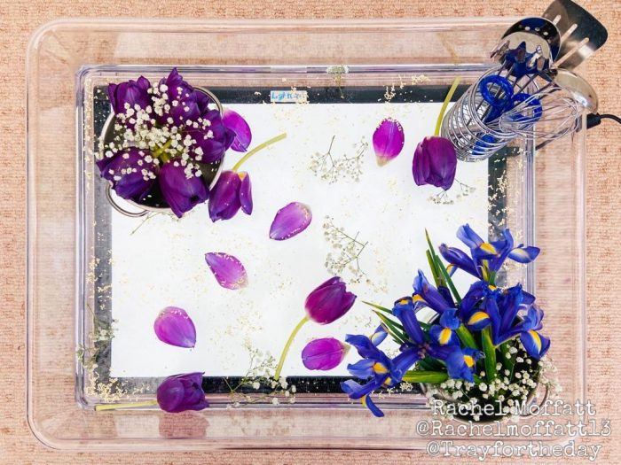 clear tray flower light table play set up