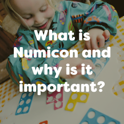 What is Numicon?