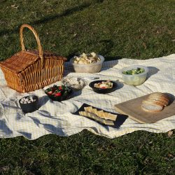 How to have a fun and educational zero-waste picnic with children