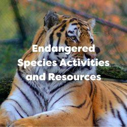 Endangered Species and Activities