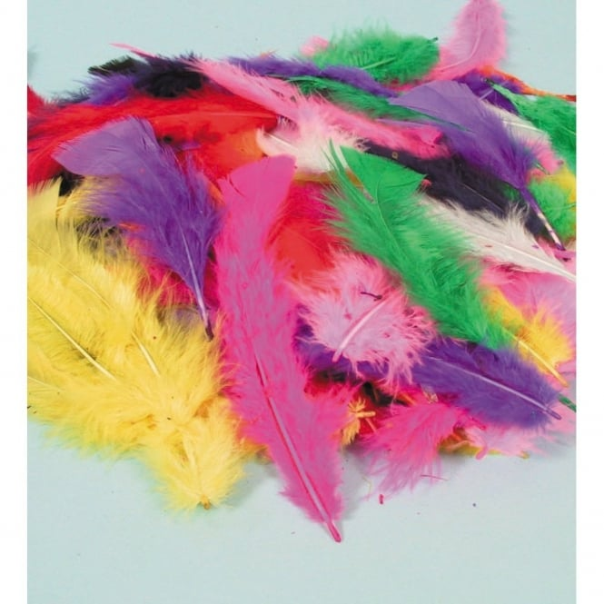 Assorted Craft Feathers