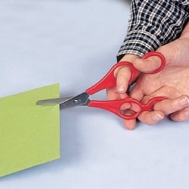 Dual Control Scissors Right Handed (BRK)