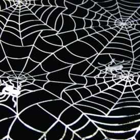Spiders Web Printed Fabric